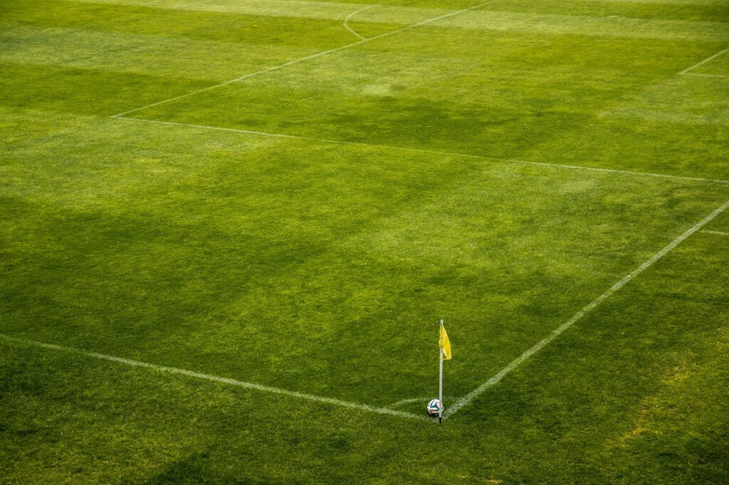 white and black soccer ball on side of green grass field during daytime